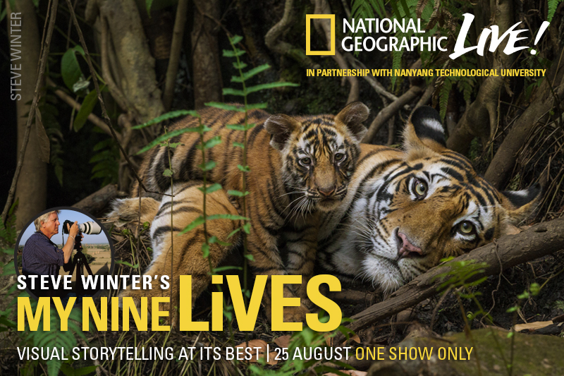 National Geographic Live Presents My Nine Lives with Steve Winter, Credit to National Geographic Live