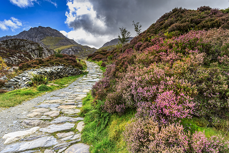 Snowdonia National Park. Photo © chris2766 | Shutterstock