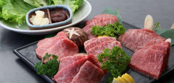 Rengaya Japanese Steak and BBQ – Where Colour Matters