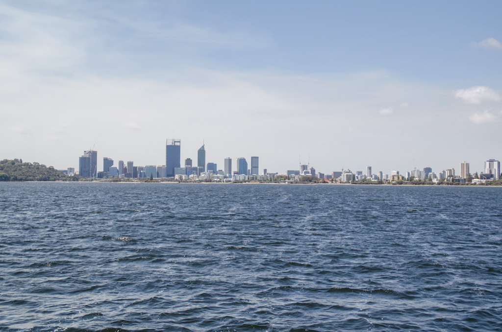 Perth City, from the Swan River. Photo © Justin Teo.