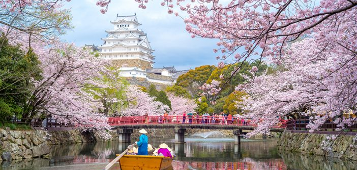 3 Must-Visit Destinations for Day Trips Out of Kyoto